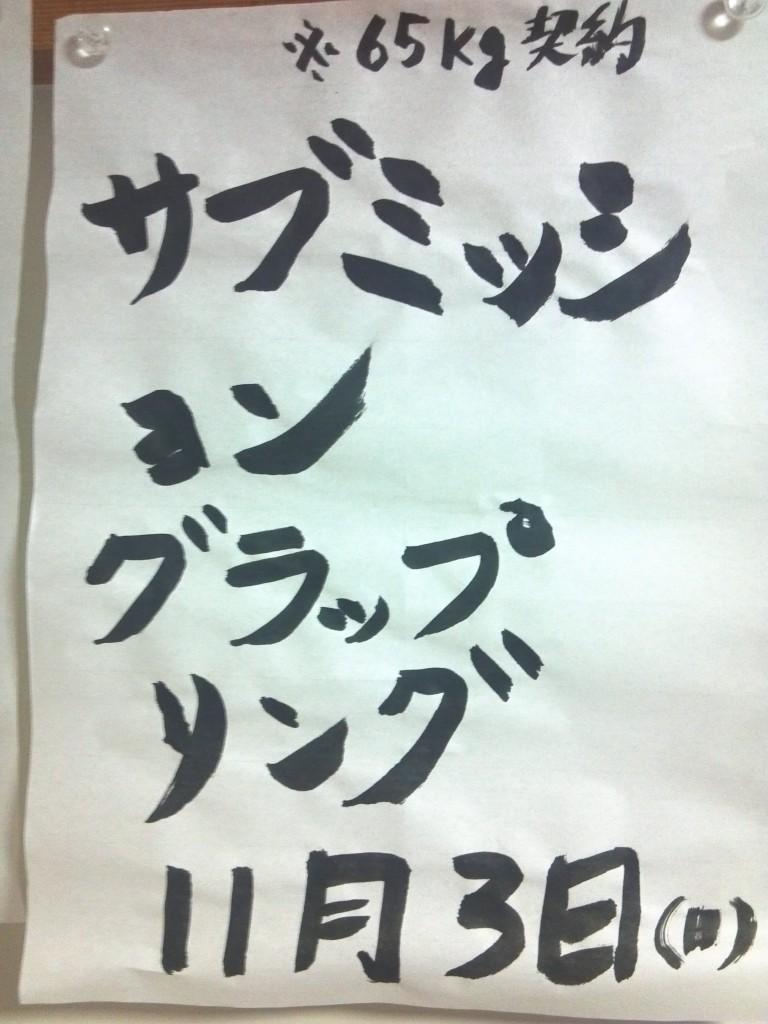 2013-11-04_21-48-47_694